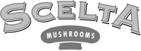 scelta_logo